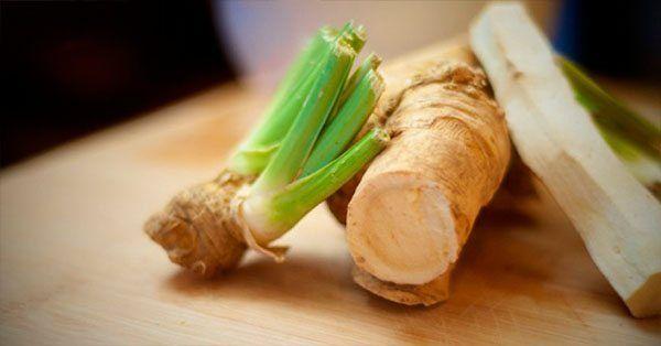 Esta raíz sirve para sinusitis, infección de orina, gripe, flemas y bronquitis