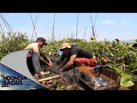 ▶ Indonesia Bagus - Ambarawa Semarang - YouTube