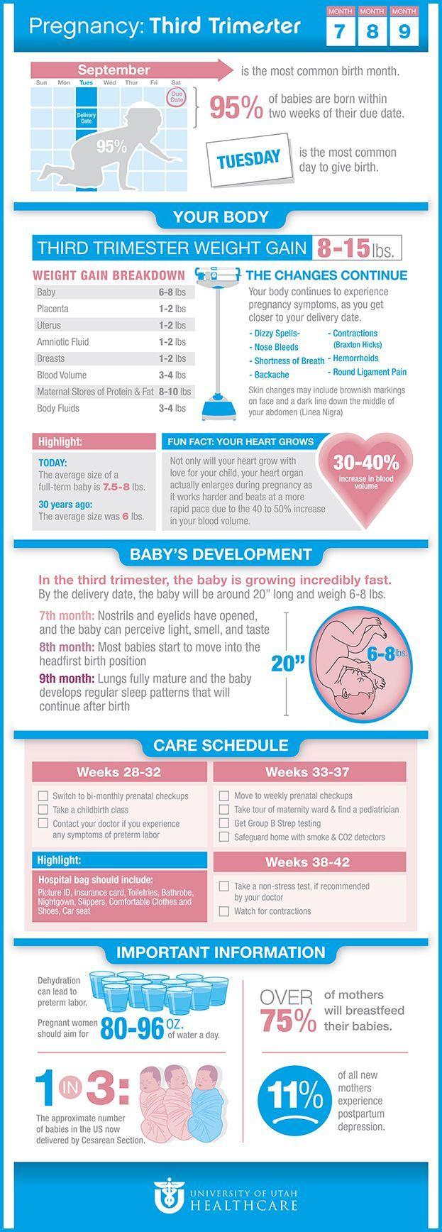 die besten 25 trimesters of pregnancy ideen auf pinterest schwangerschaft neue eltern und. Black Bedroom Furniture Sets. Home Design Ideas