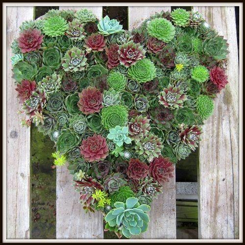 DIY Living Valentine - DIY Garden