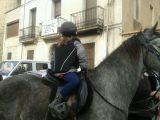 MIL ANUNCIOS.COM - Arabe. Compra venta de caballos arabe en Cataluña. Anuncios con fotos de caballos. Comprar un caballo. Todas las razas de caballos.