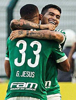 Palmeiras é só alegria !