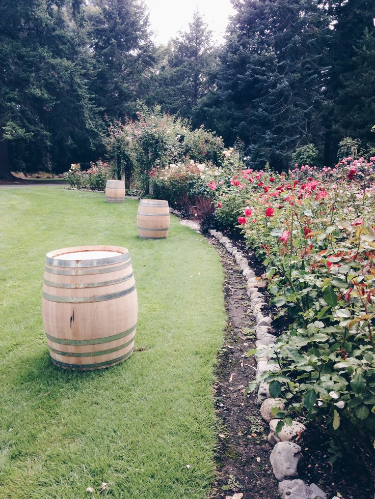 Barrels are ideal to style up your event and bring your guests to gather around. Visist our website for more information