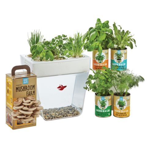 Back to the Roots Products
