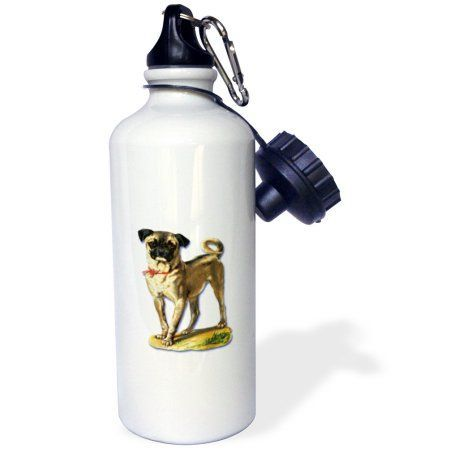 3dRose Cute Little Pug with a Red Bow Victorian Pet Illustration, Sports Water Bottle, 21oz, White