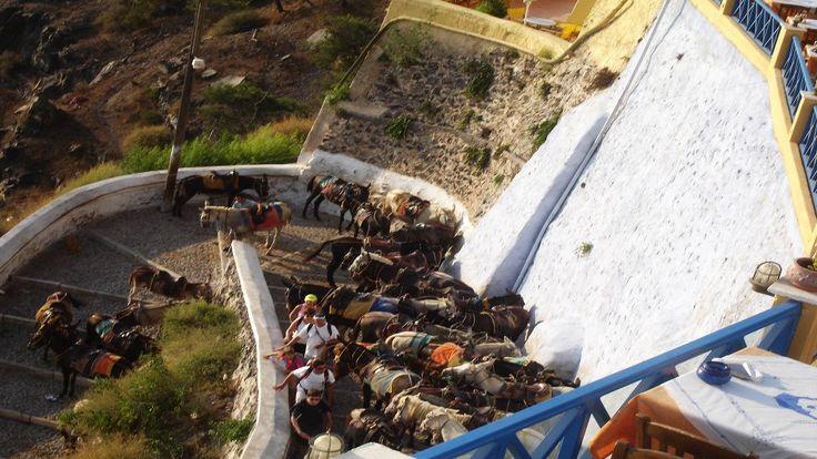 more images at www.gogreecewebtv.com
