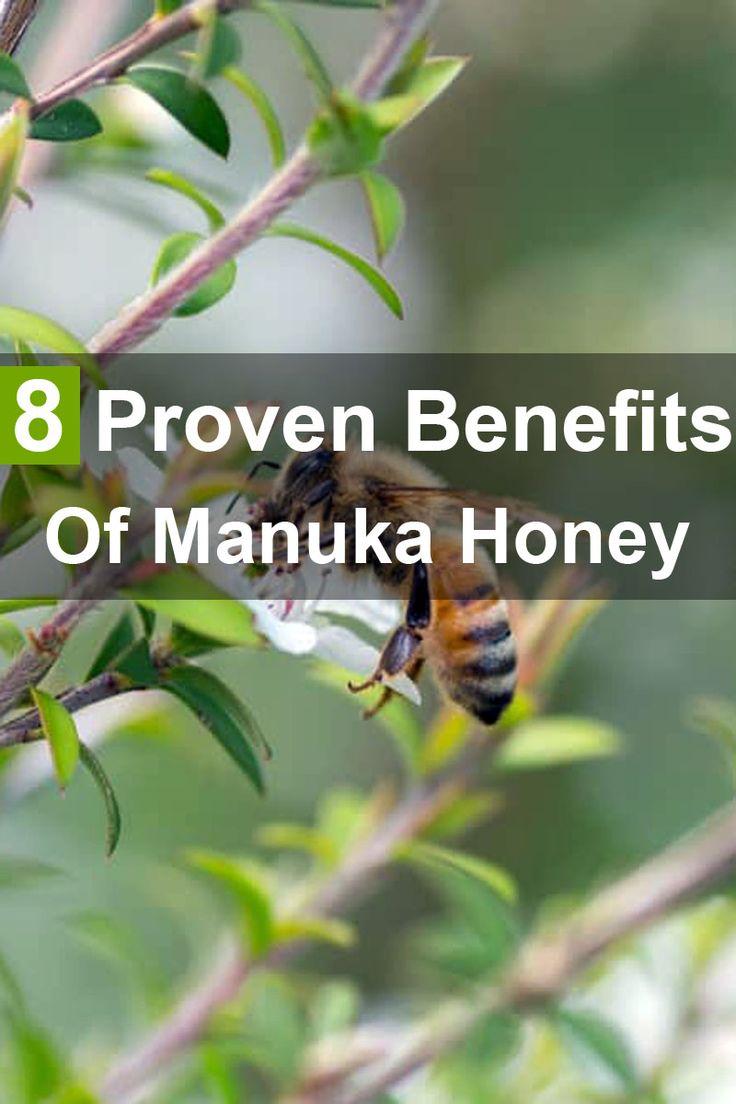 Best 25 Manuka Honey Ideas On Pinterest