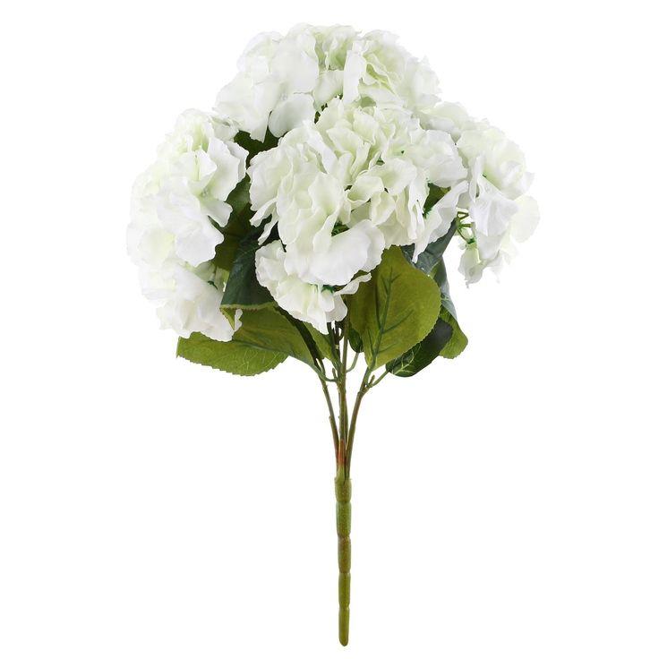 cele mai bune 20+ de idei despre hortensia macrophylla pe