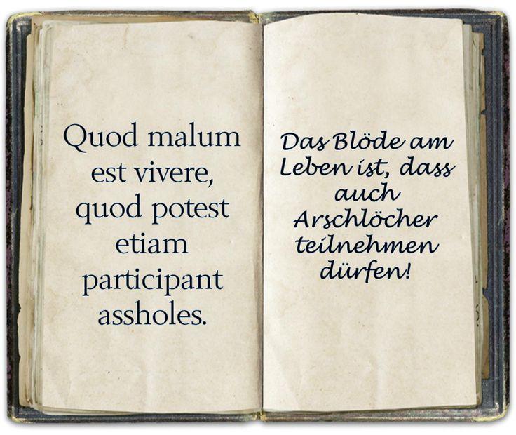 Spruch Latein Spruche Pinterest Latein Tattoo