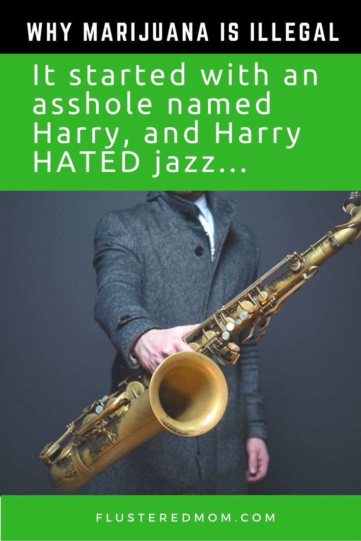 Do you know the real reason cannabis was outlawed in 1937? #marijuana #weed #endprohibition It all started with a guy named Harry and Harry really hated jazz.  It wasn't only the jazz musicians though.  There were many other people that Harry hated.  What harry loved however, was prohibition.  Read a brief story on cannabis prohibition.  This is the reason marijuana was made illegal in 1937.