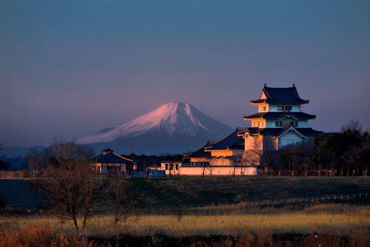 千葉県野田市。関宿城。せきやどじょう。