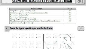 Maths CM1 : toutes mes évaluations