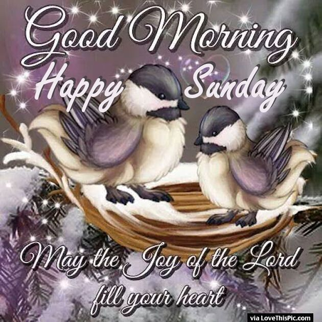 Good Morning Happy Sunday May The Joy Of The Lord Fill Your Heart good morning sunday sunday quotes good morning quotes happy sunday sunday blessings religious sunday quotes sunday quote happy sunday quotes good morning sunday sunday blessings quotes