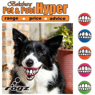Rogz - Grinz Balls: Soft enough not to hurt your dog's teeth, but firm enough to bounce. The funniest, playful treat ball under the sun. It will have Fido grinning from ear to ear. Available from Pet & Pool Hyper Boksburg. #rogz #grinz #balls