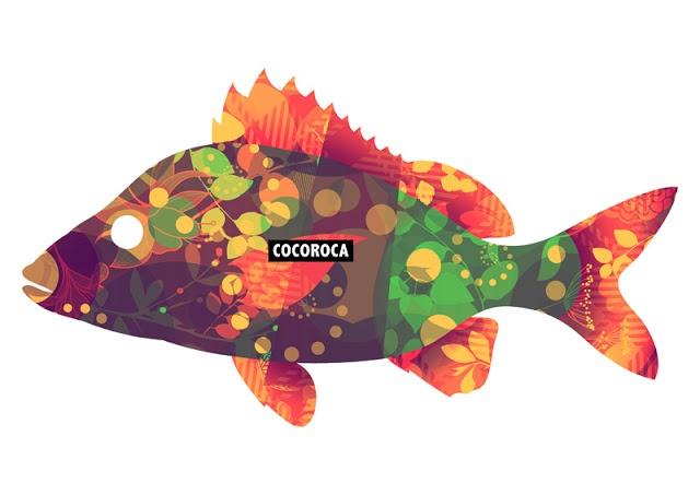 Cocoroca