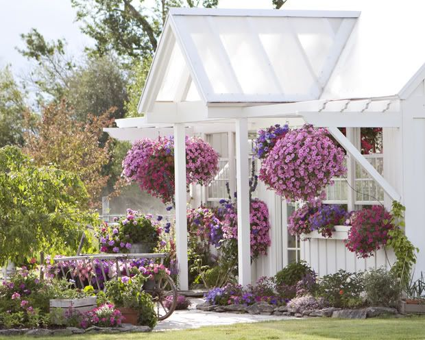 the dream greenhouseCottages Gardens, Pink House, Little House, Colors Theme, Sweets Dreams, Curb Appeal, Hanging Planters, Hanging Baskets, Purple Flower