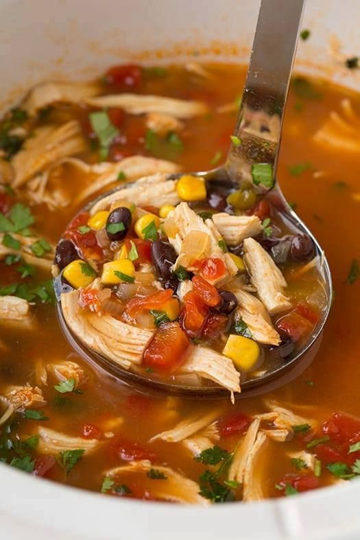 SLOW-COOKER CHICKEN TORTILLA SOUP – Easy ww points recipes