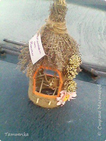 Поделка изделие Моделирование конструирование Кормушка для птичек Бутылки пластиковые Материал бросовый Материал природный Шпагат фото 2