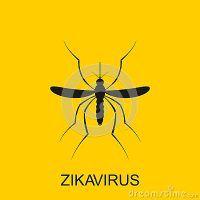 Se vedete questo insetto nella vostra casa uscite immediatamente! E chiamate qualcuno che vi aiuti! La ragione è spaventosa!