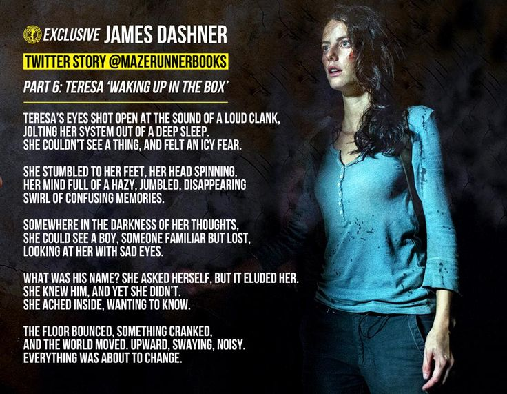 Teresa in the Box by James Dashner It says the Minho and Teresa are both part 6 one of them has to be part 7