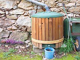 Récupération d'eau de pluie : ce qu'il faut savoir