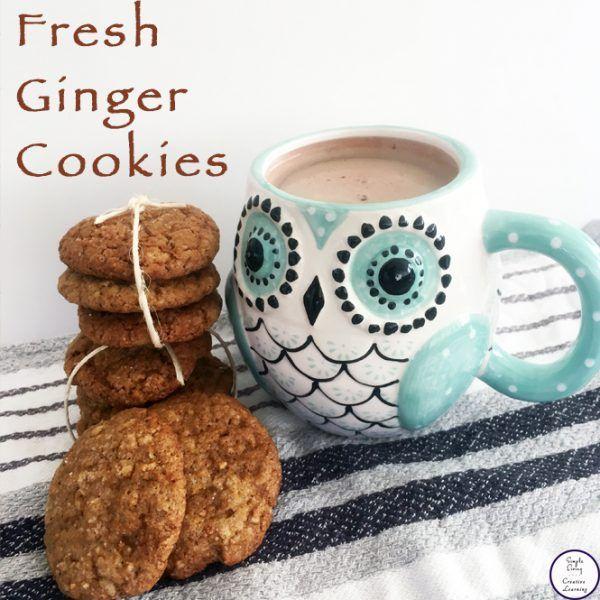 Condensed Milk Biscuits Recipe In 2020 Milk Biscuits Condensed Milk Biscuits Ginger Cookies