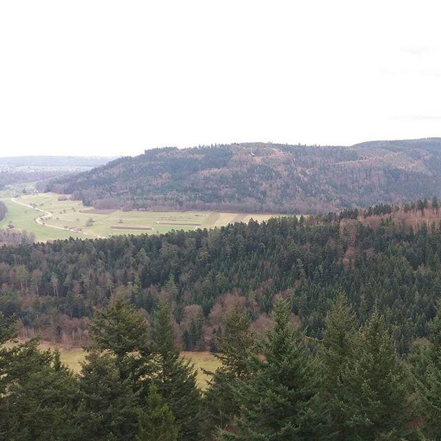 Von Althof über den Mahlbergsattel zum Mahlbergturm, dem höchsten Punkt im Landkreis Karlsruhe #bergfrei #karlsruhe #aus...