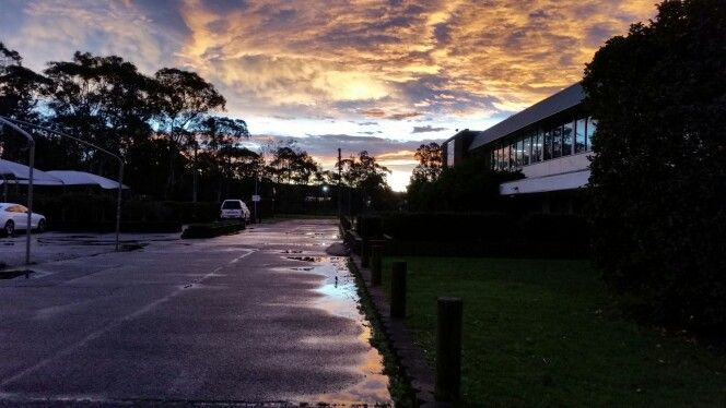 Tuggerah Sunset