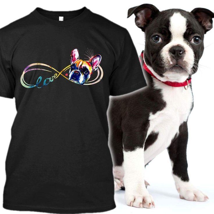 Boston Terriers, Bullies, Doggies, Little Dogs, Boston Terrier, Bullying,  Terriers, Puppies, Dogs