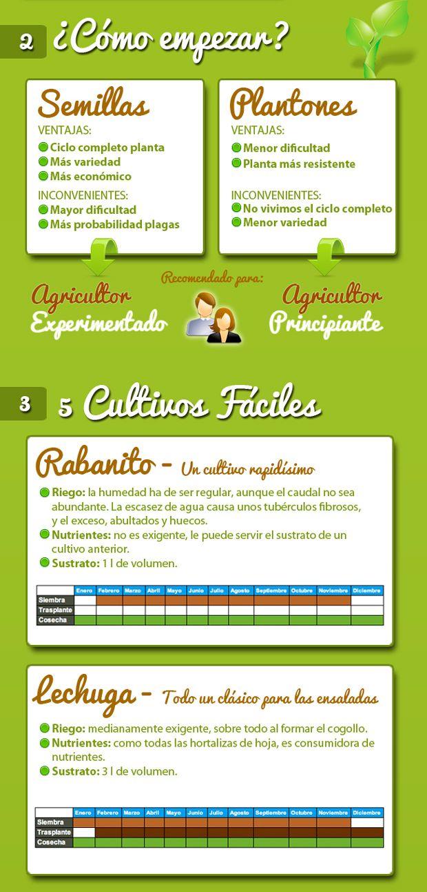 Infografía: como montar un huerto casero - EcoSiglos