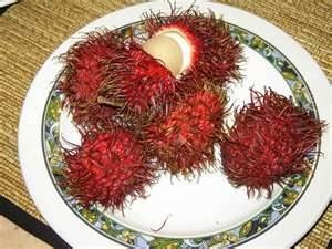 indonesian food fruit - rambutan