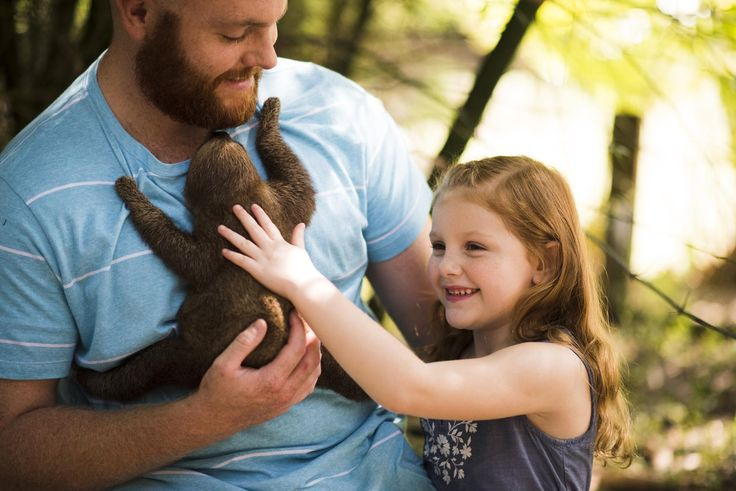 No Florida vacation is complete without a tiny sloth! Visit Wild Florida Airboats in Kissimmee, Florida to make some warm, fuzzy memories.