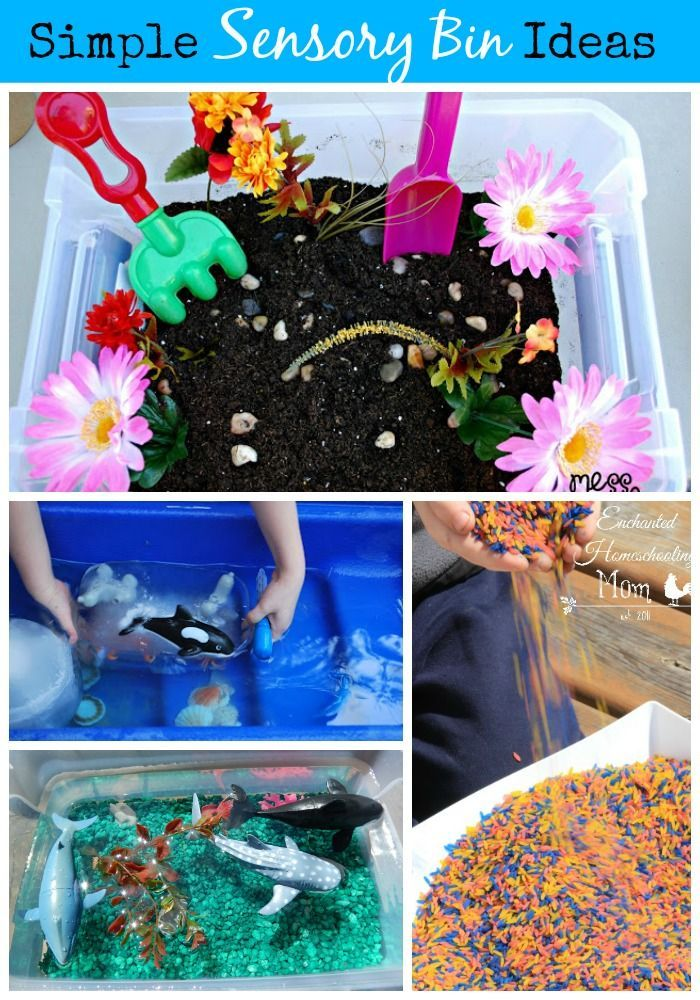 Simple Sensory Bin Ideas - Learn how to create inviting and engaging sensory bins for little hands to explore.