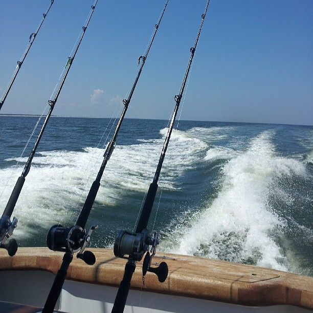 47 best outer banks fishing images on pinterest fishing for Outer banks fishing