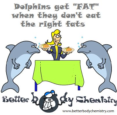 Dolphins living among humans,  develop metabolic syndrome, since they're not eating a high carb diet, carbs can't be blamed.  Margaric acid is the problem…