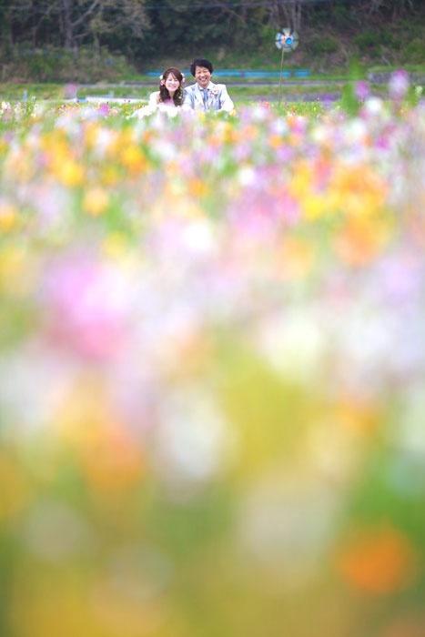 春の結婚フォト2012.05.27 花畑に囲まれて。2人の自然な笑顔、頂きました。富士山周辺で洋装ロケーションウェディング。花畑/静岡県富士市の【洋装】ウェディングフォト  結婚写真、フォトウェディングのロケーション撮影ならLOCAKON【ロケ婚】