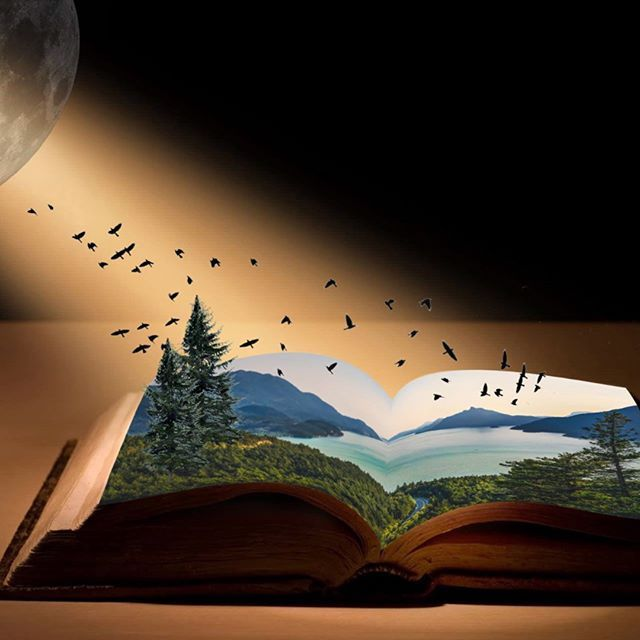 Dream book. ✨