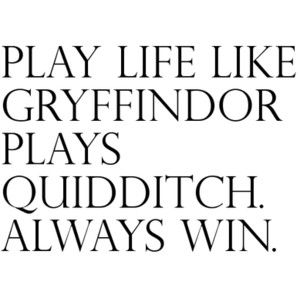 quidditch :): Harrypotter, Inspirational Quotes, Harry Potter, Win, Favorite, Plays Quidditch, Gryffindor