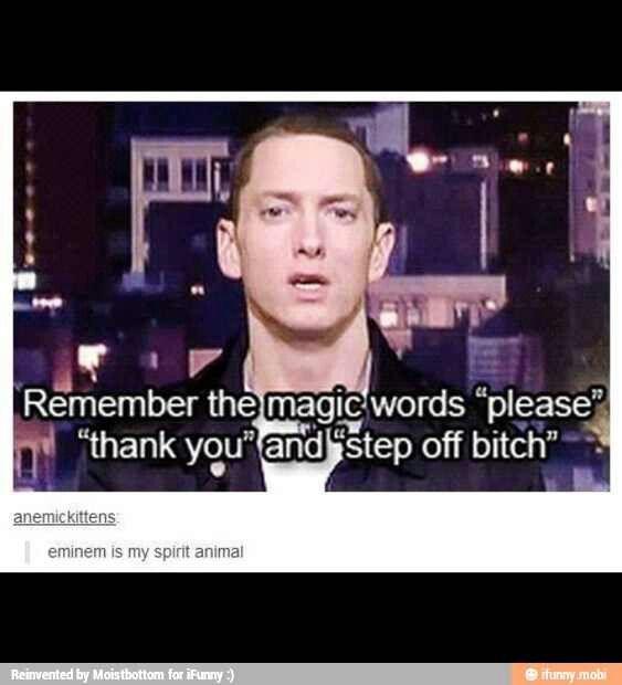 Eminem is my spirit animal