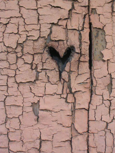 tree heart!