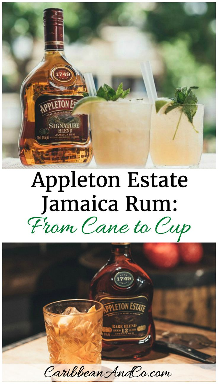 Appleton Estate Jamaica Rum From Cane to Cup - an oh so delicious drink whether straight up or in a cocktail!