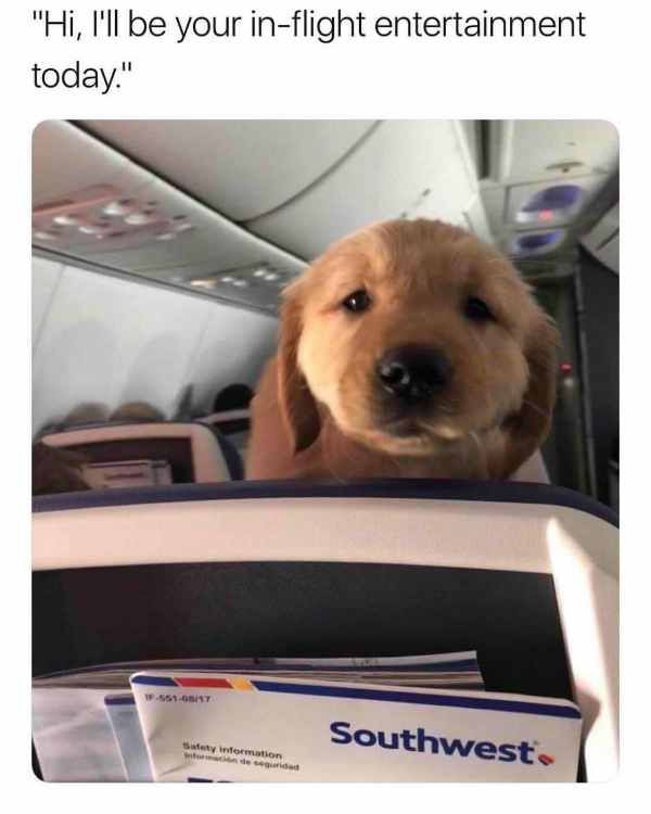 I Guess Southwest Airlines Ain T So Bad Afterall Trenduso