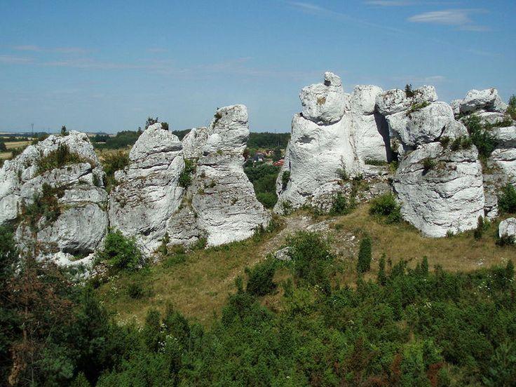 Na południe od wsi Kusięta wznoszą się Góry Towarne - https://www.google.pl/maps/@50.7659632,19.2713359,359m/data=!3m1!1e3!5m1!1e4