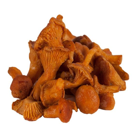 Frozen Chanterelles Mushrooms 35 oz(1 kg) @ https://houseofcaviarandfinefoods.com/mushrooms/frozen-chanterelles-mushrooms-35-oz-1-kg-detail   #caviar #blackcaviar #finefoods #gourmetfoods #gourmetbasket #foiegras #truffle #italiantruffle #frenchtruffle #blacktruffle #whitetruffle #albatruffle #gourmetpage #smokedsalmon #mushroom #frozenporcini #curedmeets #belugacaviar #ossetracaviar #sevrugacaviar #kalugacaviar #freshcaviar #finecaviar #bestcaviar #wildcaviar #farmcaviar #sturgeoncaviar