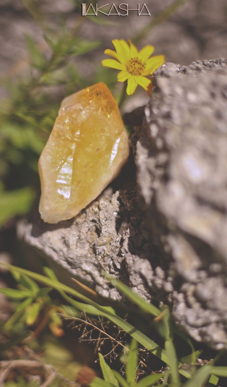 Sun charge with Citrine ~  Citrine is considered to be a prosperity and success crystal. It is primarily associated with the solar plexus chakra, but balances all chakras.   #citrine #healingcrystals #solarplexuschakra