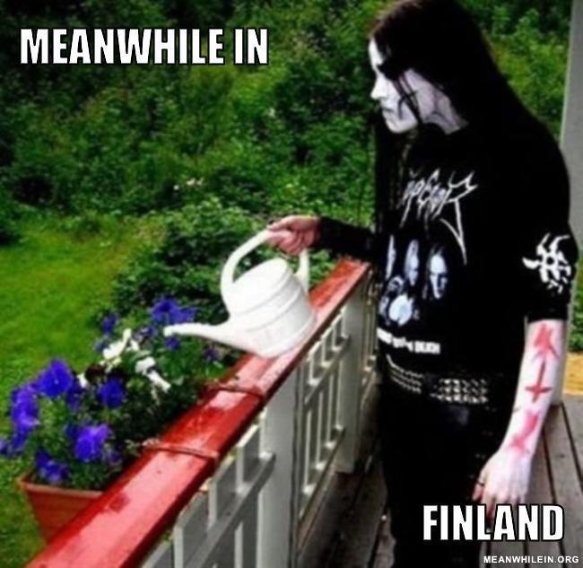 Metal gardening!
