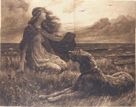 irish wolf hounds | History of the Irish Wolfhound