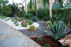 succulent landscape design - Google Search