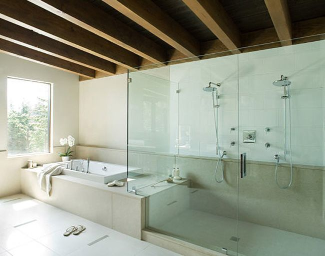 Double Shower And Tub But Maybe With Some Colored Tile