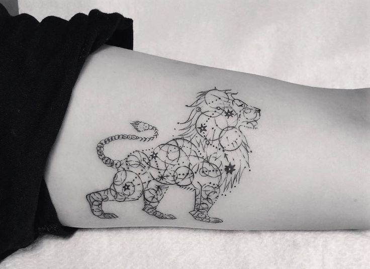 tatuaje de león con con estrellas